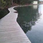 The Merimbula Boardwalk Photo