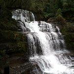 Φωτογραφία: Liffey Falls