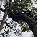 Lekki Conservation Centre照片