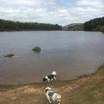 Cod Beck Reservoir照片