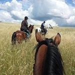 Tuscan grain fields forever...