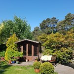 Back garden at Wildwood
