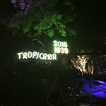 Tropicana – fotografija