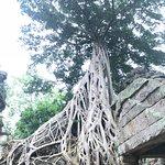 塔普伦寺照片