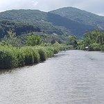 Lago di Massaciuccoli의 사진
