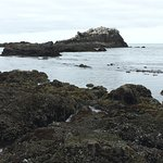Yaquina Bay Lighthouse照片