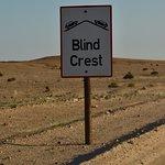 Bilde fra Welwitschia Plains, A Scenic Drive