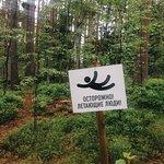 Norway Park Orekh – slika