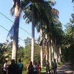 Parque Municipal da Cidade (Gávea)