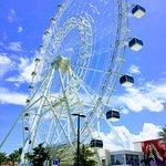 Orlando Icon
