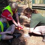 Dartmoor Zoological Park照片