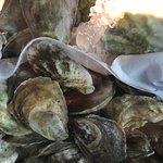 Bild från G&B Oyster Bar