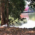 Parque Portugal Photo