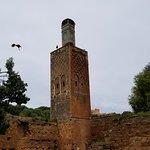 Minaret and storks
