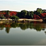 lake at lalbagh.. around a km long.. u can sit and enjoy the beautiful scene
