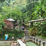 Banjar Holy hotspring