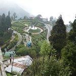 Batasia Loop from top