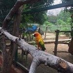 Фотография Prani, The Pet Sanctuary