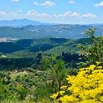 Valokuva: Montalcino 564