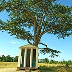 The Tree Houst at Croome