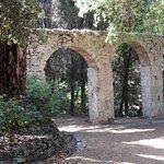 Photo of Rodini Park