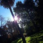 Albury Botanic Garden