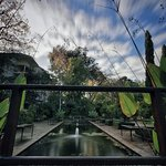 Foto de Stellenbosch University Botanical Garden