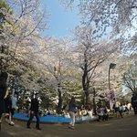Photo of Ueno Park