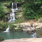 Dogwood Canyon Nature Park照片