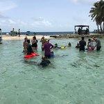 Seahorse Dive Shop Foto