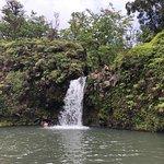 ภาพถ่ายของ Pua'a Ka'a State Park