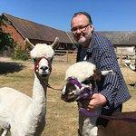 Middle England Farm Alpacas