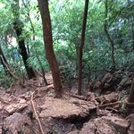 Steep trail with ropes to help