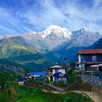 Photo of Poon Hill