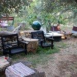 Foto de Masline Olive Garden Bar