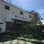 Gardens around Magnolia market and the silos