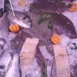 Muita variedade de peixe de mar