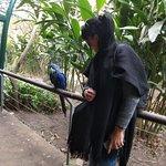 Foto de Temaiken Biopark