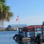 Birds Dock in Crystal River