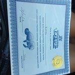 Certificaat voor de kinderen