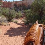 Foto Canyon Trails Ranch Guided Horse Tours