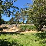 Photo de Parc de Beacon Hill
