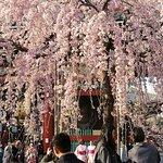 Foto de Jorenji Temple (Tokyo Daibutsu)