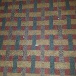 Filthy un-vacuumed carpet