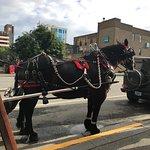 Bilde fra Horse Drawn Carriage Co., LLC