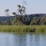 Auf der Fahrt nach Konstanz, Naturschutzgebiet