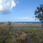Вид от экологической тропы