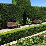 Photo of Followme Granada