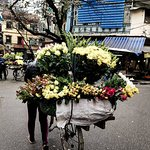Hanoi Flower