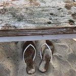 Bild från Sandy Bay Beach Club